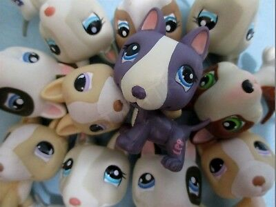 Toy Bull Terrier - Littlest Pet Shop Lot 2 Random Bull Terrier Puppy Dog Authentic BUY 3 GET 1 FREE