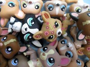 Littlest Pet Shop Set Lot of 2 RANDOM Corgi Puppy Dogs 100% Authentic + Gift Bag