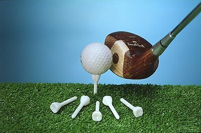 Cavities (Cavitee) molar shape golf tees dentist dental novelty gift plastic.