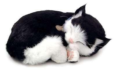 Black White Katze Perfect Petzzz Katzenbaby Kitty atmende lebensechte Haustiere