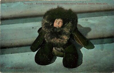 1909 AYP Exposition Postcard 5194 Raltugie Siberian Eskimo Baby in Sealskin - Eskimo Suits