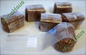 6 pounds sterilized rye grain berries substrate, mushroom spawn grow bag