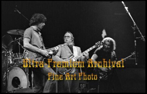 GRATEFUL DEAD w/ Stephen Stills 4/17/83 in NJ * Hi-Res Pro ARCHIVAL Photo 8.5x11