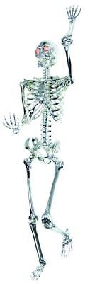 Lebensgröße Chrom Beleuchtete Skelett Pose n Stay Halloween - Leben Größe Skelett Halloween