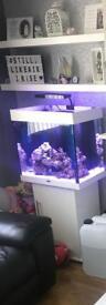 Fish Tank Jewel 120