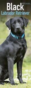Black Labrador Retriever SLIM 2019 Dog Calendar 15% OFF MULTI ORDERS!