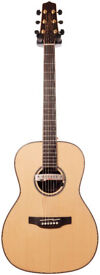 Takamine GY93 with Shadow pickup & Hard Case
