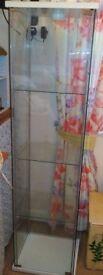 Modern Tall Glass Display Cabinet