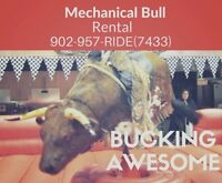 Mechanical Bull For Rent