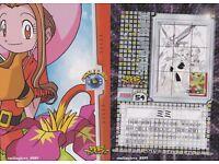 DIGIMON ADVENTURE Japan 9 Card Puzzle Set KARI NYAROMON GATOMON SALAMON ANGEWOMO