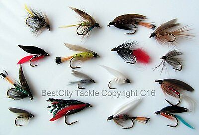 72 FB//BH Hare/'s Ears W//Fly Box Trout Wet Fly Fishing Flies US Veteran Owned