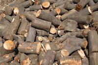 Coupe selective de bois