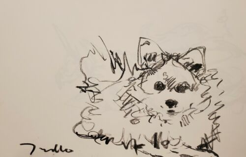 JOSE TRUJILLO - Original Charcoal Paper Sketch Drawing 11X17 DOG PORTRAIT ART