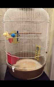 Bird cage for sale with toys!