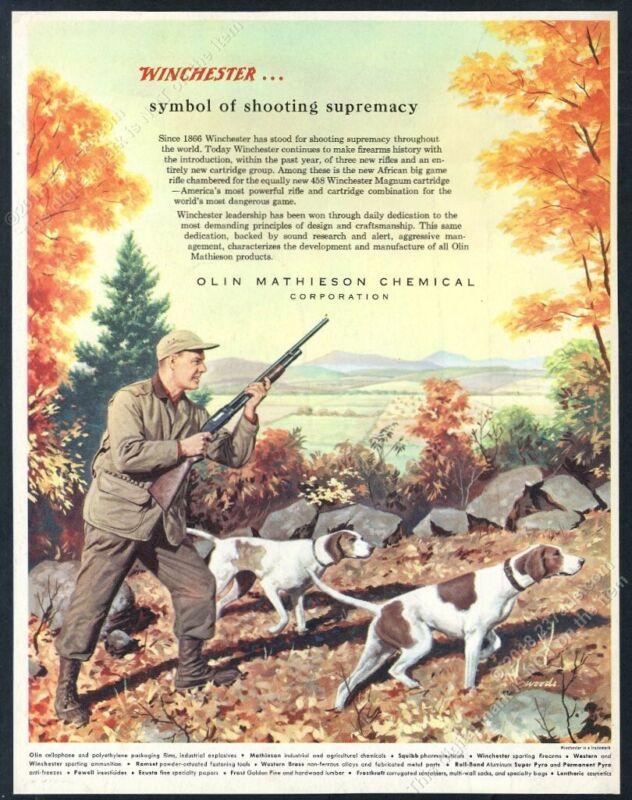 1956 Winchester shotgun pointer dogs hunter hunting art vintage print ad
