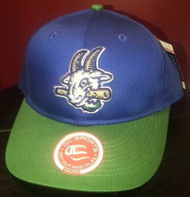 d94756c73c207 HARTFORD YARD GOATS Minor League Replica Baseball Adjustable YOUTH Hat NEW!!