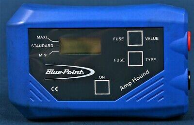 Amp Hound Blue-point