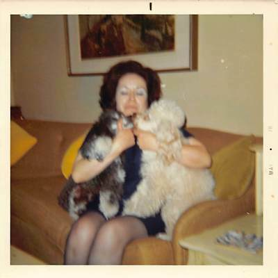 COUPLES THERAPY - BLACK & WHITE POODLE DOGS FORCED TO KISS AND MAKE UP VTG PHOTO