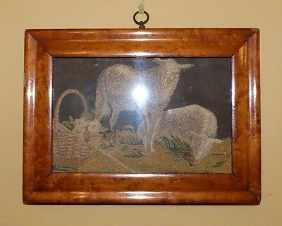 Georgian silk work embroidery of two lambs by a basket of flowers in maple frame