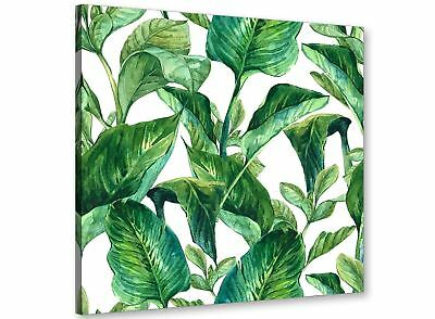 Green Palm Tropical Banana Leaves Canvas Wall Art Print - 49cm Square - 1s324s