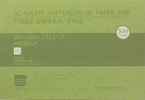 BAOHONG Academy Grade Watercolor Painting Paper, 100%Cotton Cold Press, 20 Sheet