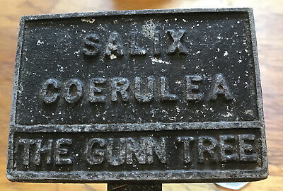 OLD VINTAGE CAST ZINC HORTICULTURAL PLANT TREE LABEL - The Gunn Tree , Salix Coe