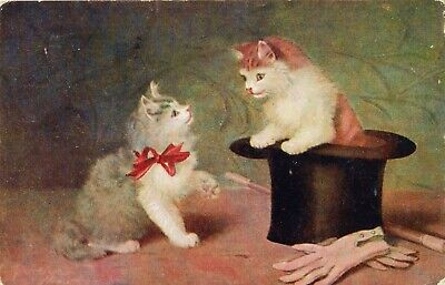 Kitten Cats Magic Trick 1909 Divided Back Illinois Posted Postcard