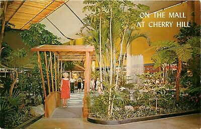 Cherry Hill Mall Shopping Center Tropical Gardens Court 1960's NJ (Nj Gardens Mall)