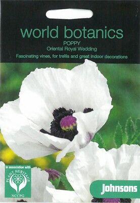 World Botanics Poppy Oriental Royal Wedding seed