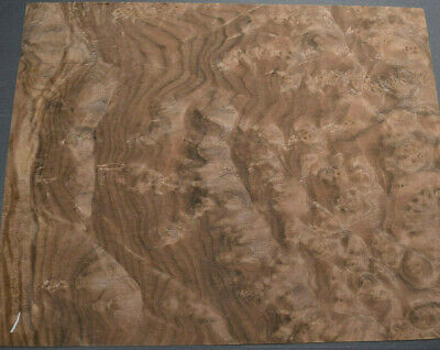Walnut Burl Raw Wood Veneer 4 Sheets At 11 X 13 Inches 142nd Thick  E4705-6