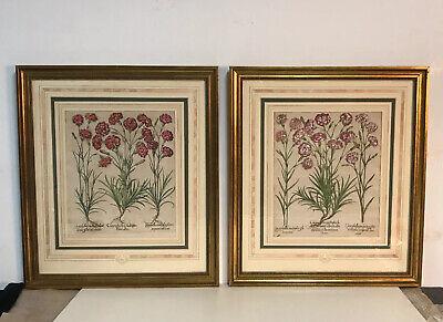SET OF TWO Original Basilius Besler Botanical Prints In Gilt Wood (Botanical Setting)