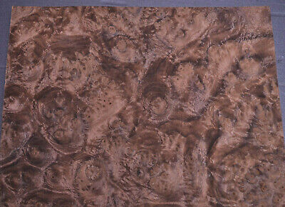 Walnut Burl Raw Wood Veneer Sheets 8.5 X 10 Inches 142nd Thick   7627-19