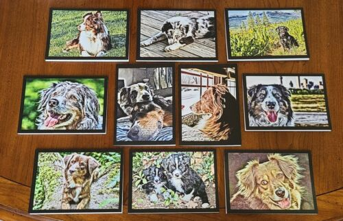 Aussie Rescue - Note cards Pack 1 (blank inside)