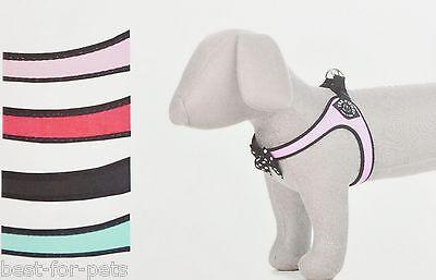 Tre Ponti Fashion Brustgeschirr Polka Dot Bow Click-Verschluss 4 Farben 5 Größen ()