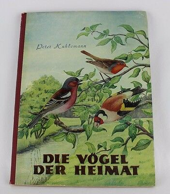 DIE VOGEL DER HEIMAT by Peter Kuhlemann German Bird Watching Anatomy Book