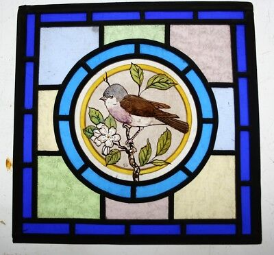 Beautiful Victorian Design Stained Glass Panel Hand Painted 'Whitethroat' Bird