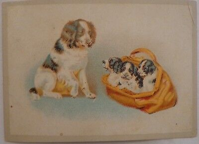 CARD GREETING TRADE TRADING CABINET SPANIEL DOG MOM WITH BAG OF PUPPIES VINTAGE