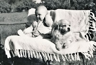 Vintage Snapshot, Baby with Cocker Spaniel Dog for sale  Shipping to Canada