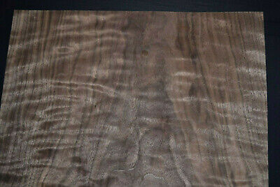 Curly Walnut Raw Wood Veneer Sheets 15 X 22.5 Inches 142nd Thick  G7805-33