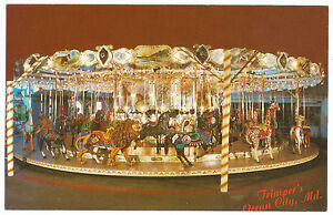 Ocean City MD Maryland Trimper's Carousel Vintage Postcard