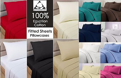 Hotel Quality100% Egyptian Cotton 200TC Fitted Sheet Single 4ft Small Doubl King