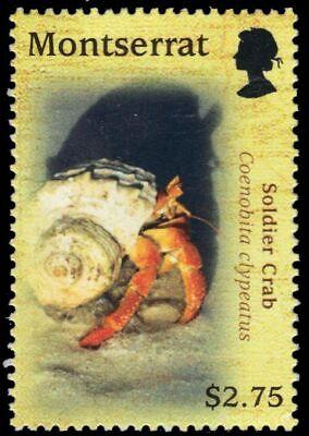 "MONTSERRAT 1223b - Soldier Crab ""Coenobita clypeatus"" (pa80147)"