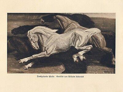 Galopping Horses german art print 1926 wild Broncos Ueberrueck Breslau +