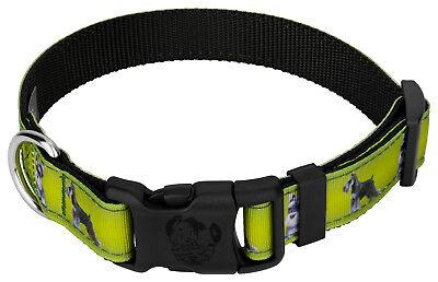 Country Brook Design® Deluxe Schnauzer Ribbon Dog Collar