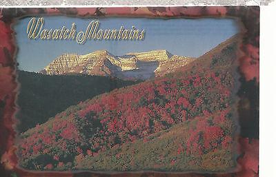 Wasatch Mountains    Utah   Postcard 8916B
