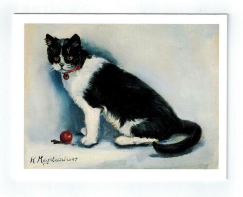 New Cat With Red Ball Notecards Set - 12 Note Cards By Ruth Maystead CATS-20