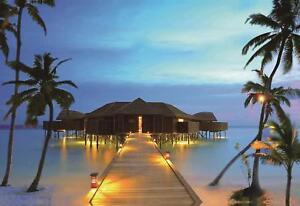Northlight LED Tropical Paradise Island Beach Scene Wall Art 15.75