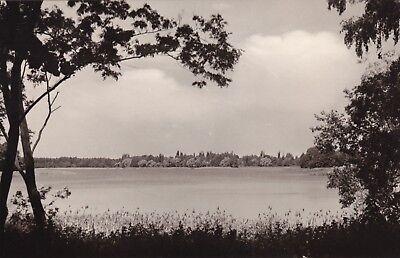 Blick auf Schwerin , Kr. Königs-Wusterhausen , DDR  ,Ansichtskarte