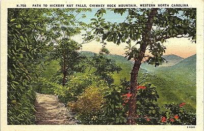 Chimney Rock Mountain, North Carolina, Hickory Nut Falls, Path - Postcard (1C)