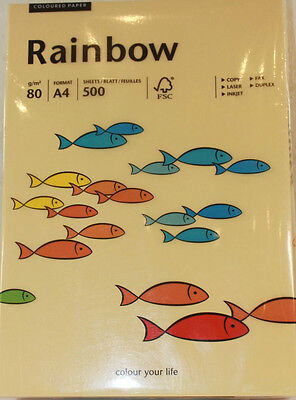 500 Blatt Rainbow farbiges Papier A4 80g Hellchamois / Creme
